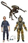 Aliens Actionfiguren 18 cm Serie 3 Sortiment (14)